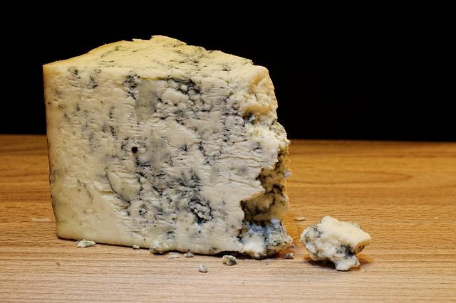plísňový sýr