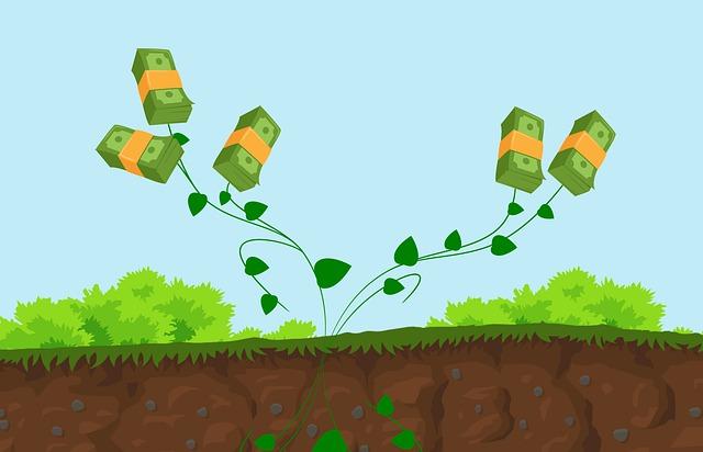 vzkvétající finance